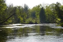 Summer on the Pere Marquette River