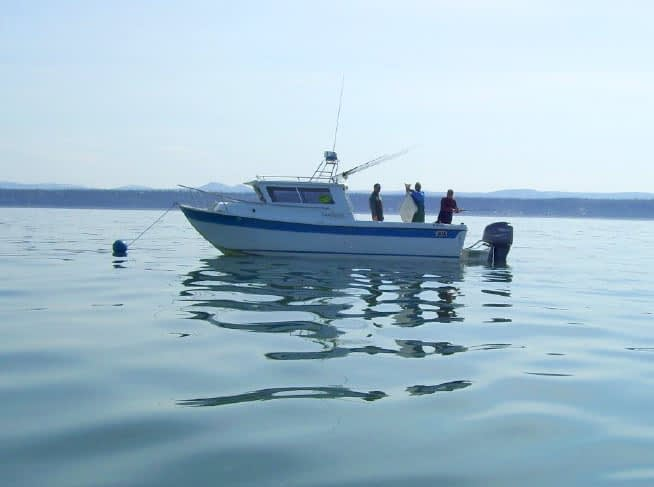 Best Kenai Charter Fishing
