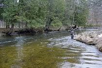 Pere Marquette River Fishing